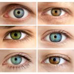 how is eye color determined