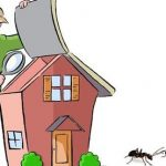 pest inspection when buying a house