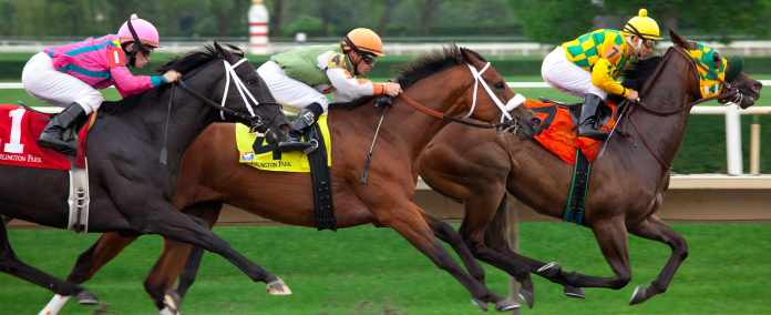 Horse Racing Such an Exciting Sport to Bet On