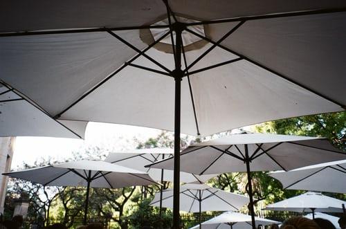 world of garden canopies